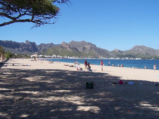 Puerto Pollensa Beach