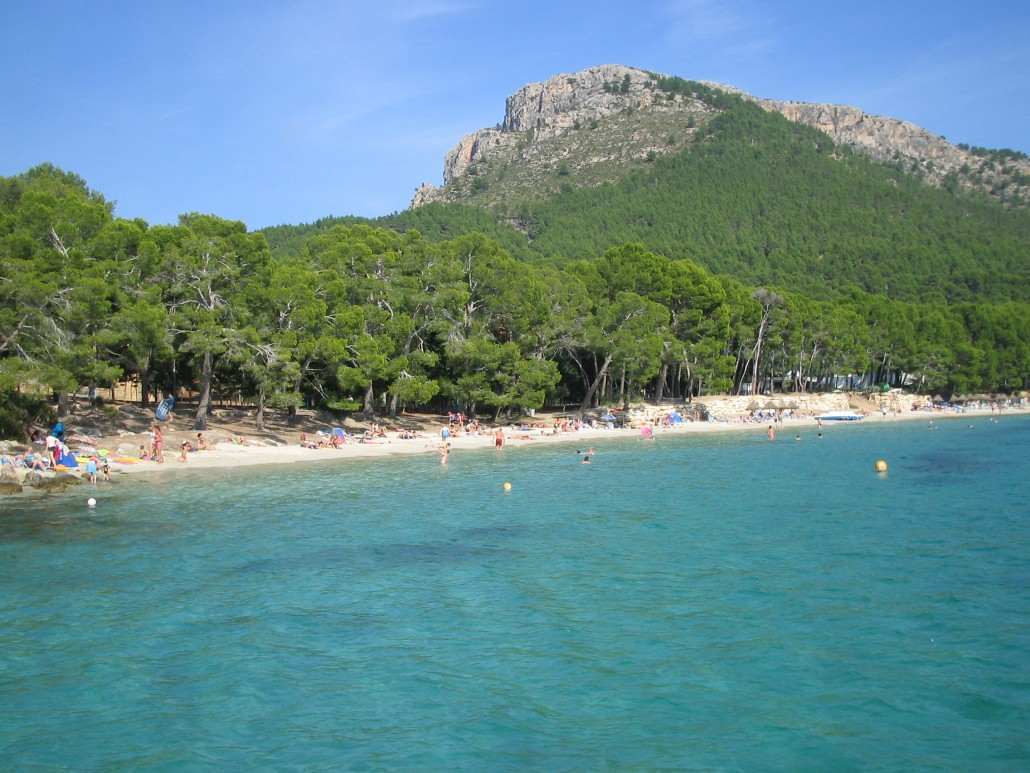 how to visit Formentor Beach from Puerto Pollensa  Things To Do In Puerto Po...